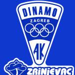 DINAMO i ZRINJEVAC_x4.cdr